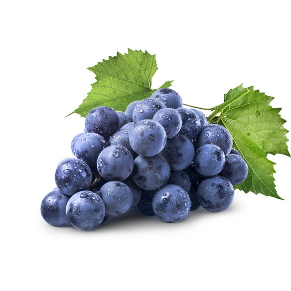 https://dermaquestinc.co.uk/ingredients/grape-seed-extract/